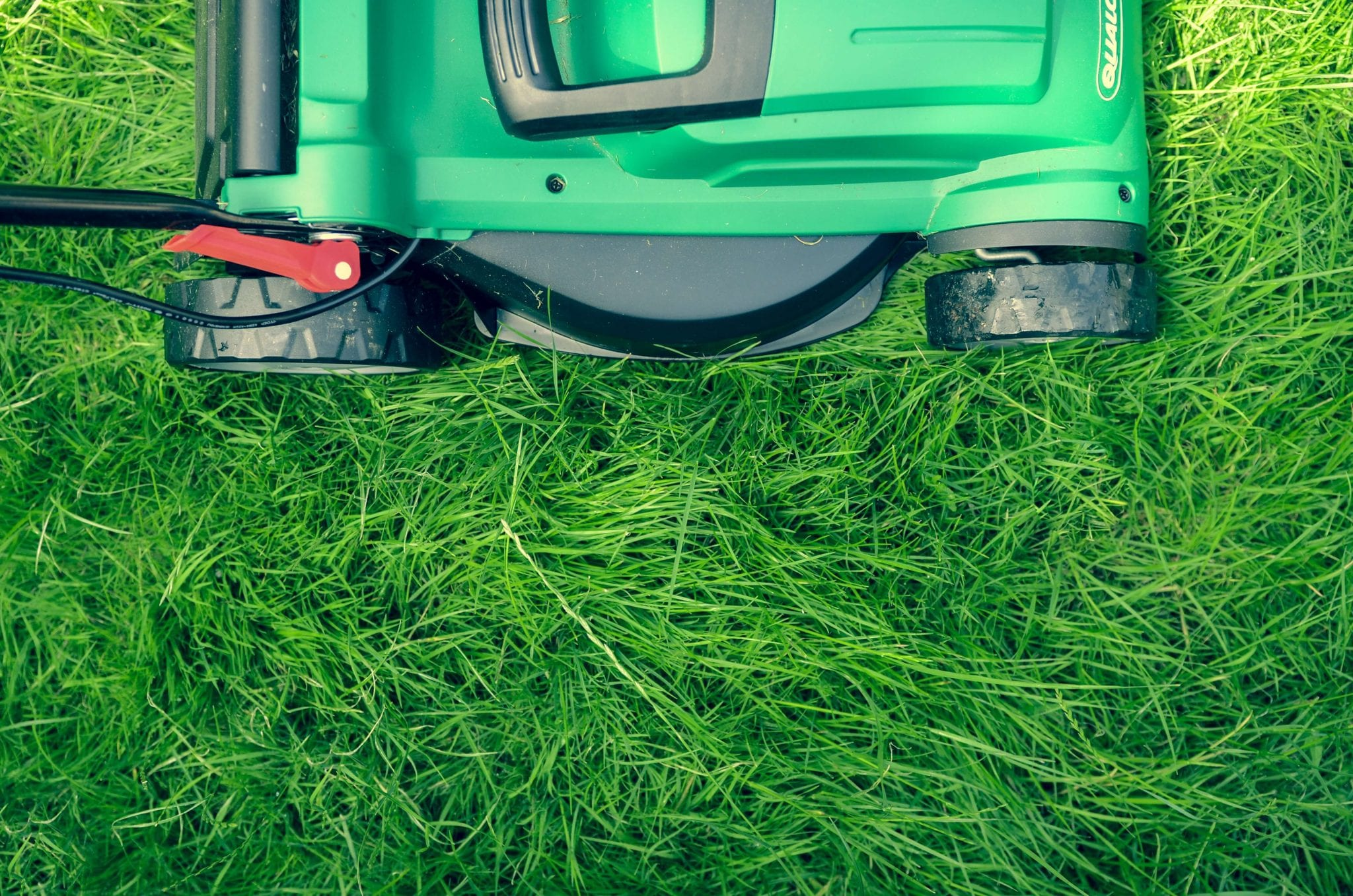 Starting a Landscaping Business? Read This First